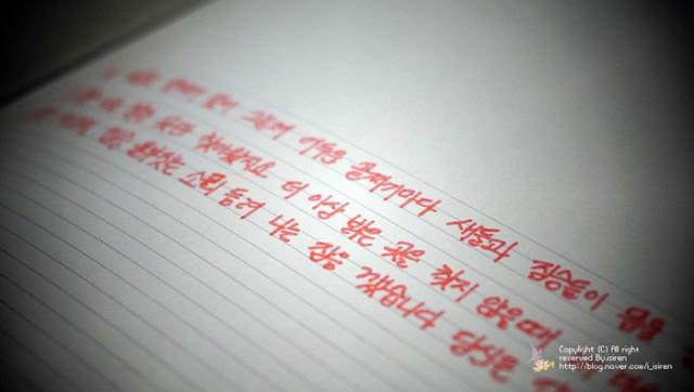 _DSC4657.jpg