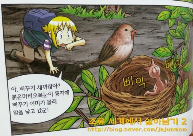 survival_in_birds_world_jejunmom005.jpg