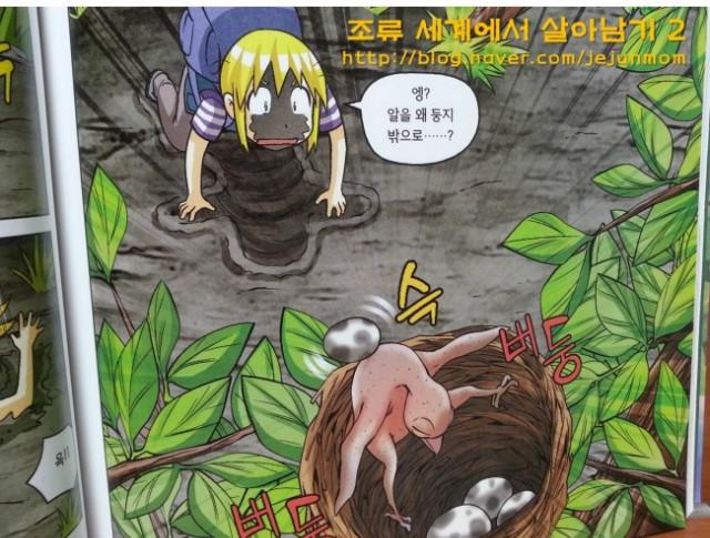 survival_in_birds_world_jejunmom004.jpg