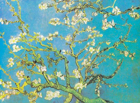 아몬드꽃피는나무.jpg