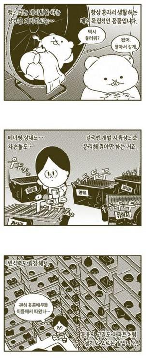 혼자를기르는법-웹툰 ㄴ 혼자_tn.jpg