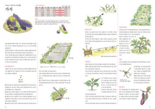 자연농교실 ㄴ_tn.jpg