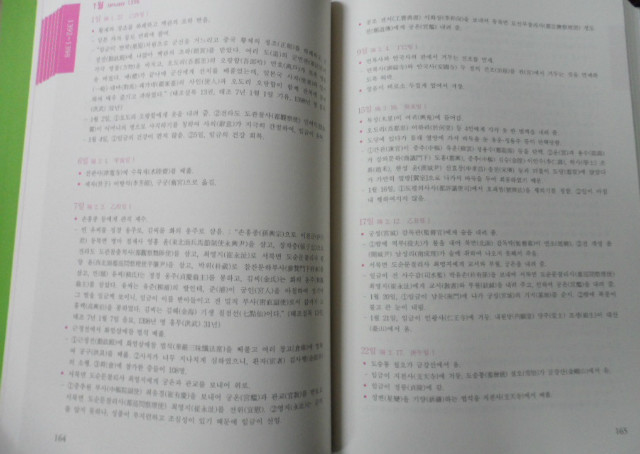 SAM_0842.JPG