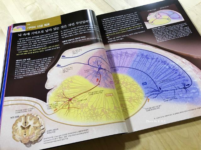 과학잡지004.jpg