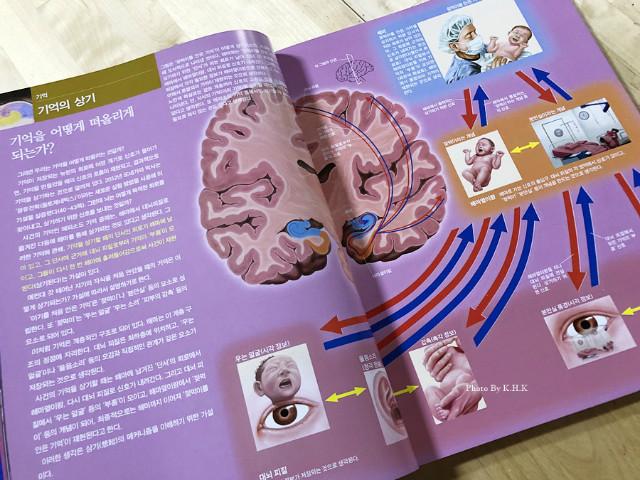과학잡지006.jpg
