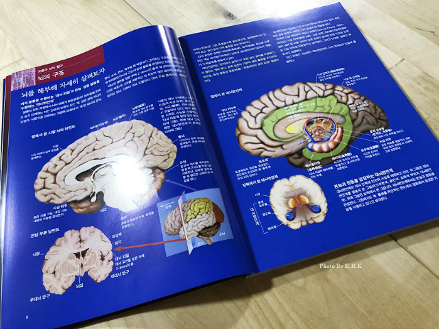 과학잡지003.jpg