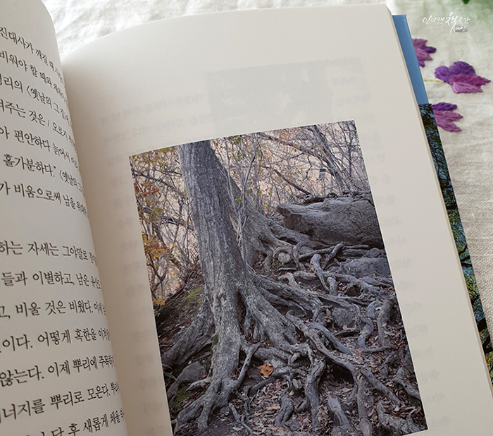 나무의말이좋아서 (13).jpg