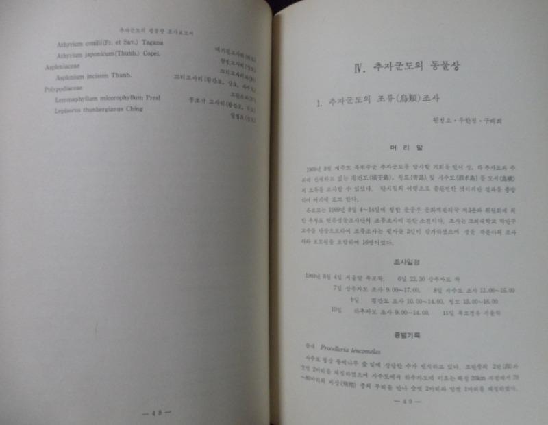 SAM_3783.JPG