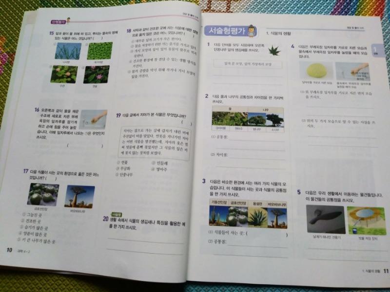 13-5.jpg
